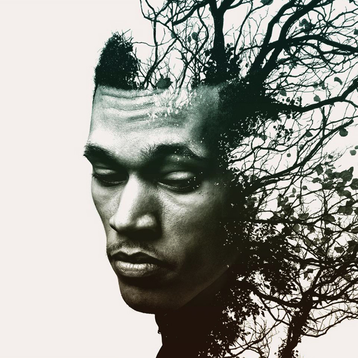 """Review: Trip Lee – """"Rise"""""""