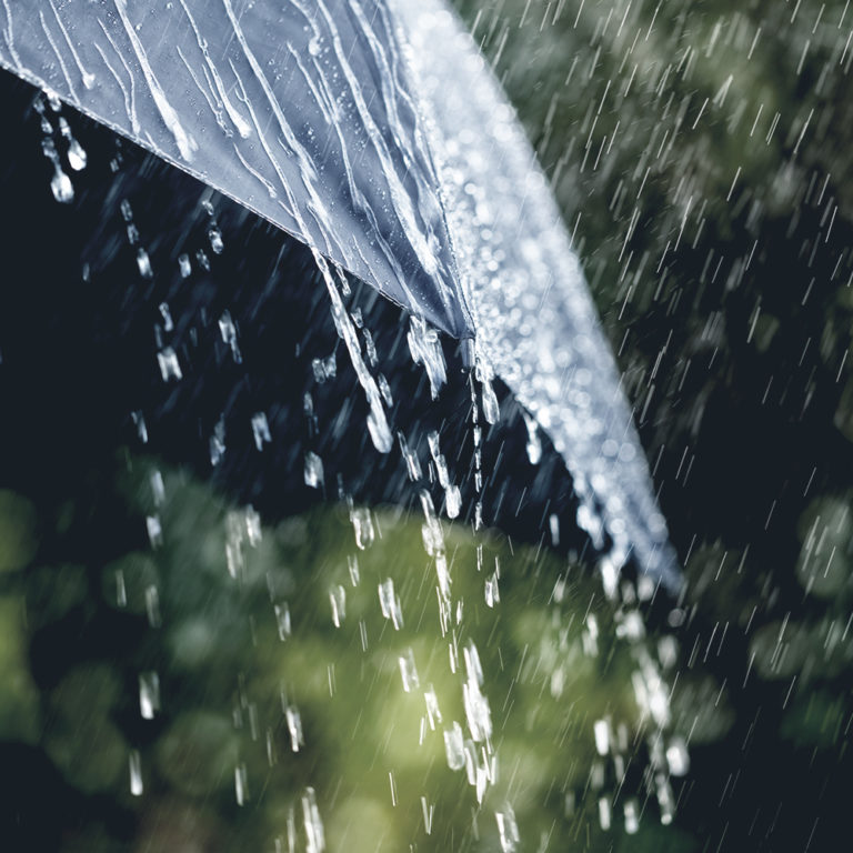 Lessons from the rain