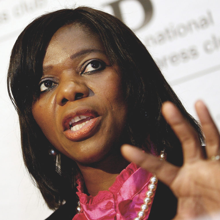 Each One Of Us, A Public Protector!