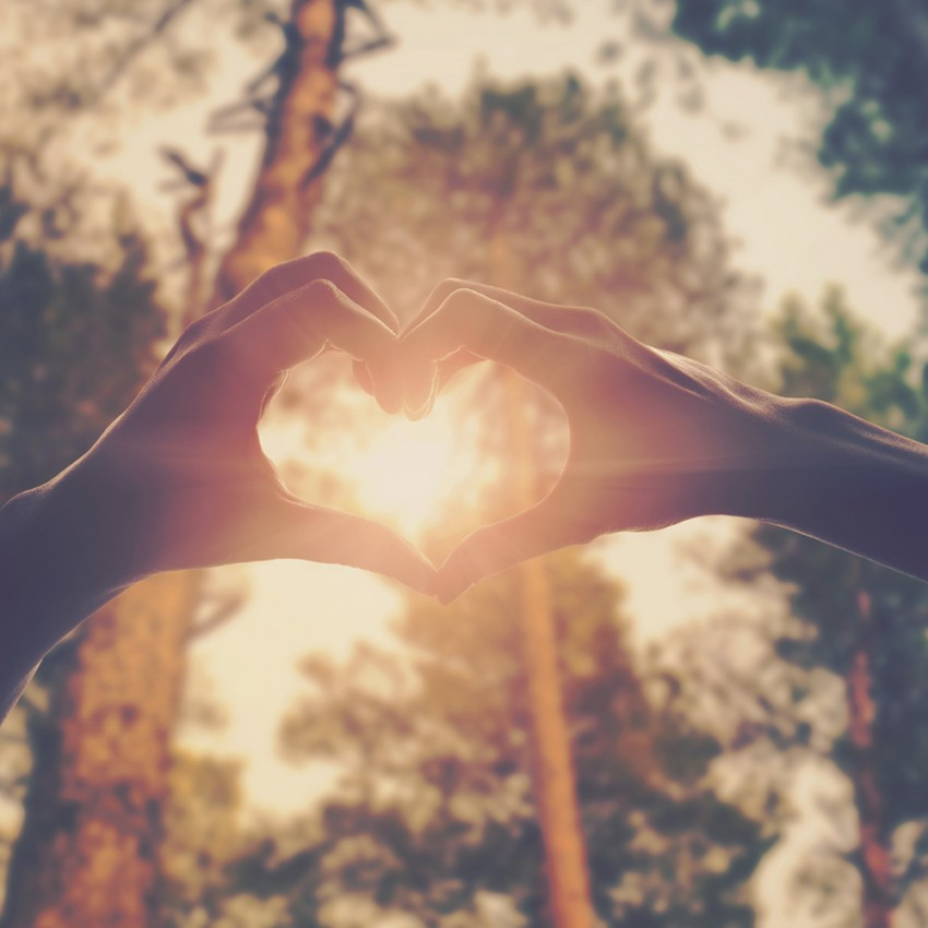 Success: are you known by your love?