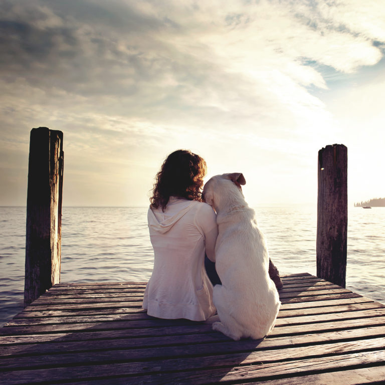Before You Get A Dog – Things To Consider